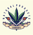 cannabis natural products joint smoke vector image vector image