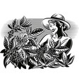 girl which collects coffee on a plantation vector image vector image