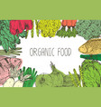 hand drawn organic food background vector image