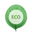 leaf with eco frame green eco friendly sign vector image