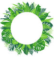 tropical leaves round frame vector image vector image