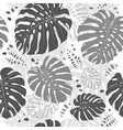 tropical leaves seamless pattern monstera leaf vector image