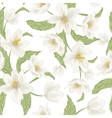 Hellebore flower seamless pattern watercolor white vector image vector image