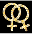 lesbians couple symbol vector image