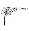 Music dandelion flower