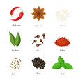 realistic 3d detailed classic spices collection vector image vector image