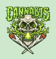 smoking skull cannabis joint vector image vector image