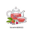 a transparent glass teapot and a cup with berry vector image vector image