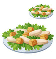 caesar salad detailed icon isolated on vector image