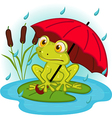 frog under umbrella vector image vector image
