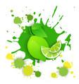 lime fruit logo watercolor splash design fresh vector image vector image