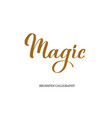 magic brushpen modern calligraphy vector image vector image