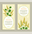 sandalwood cards collection vector image vector image