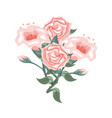 set of pink roses and tulips vector image vector image