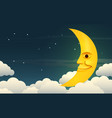 smiling moon vector image vector image