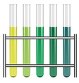 test tubes in holder vector image vector image