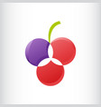 three circle flower or fruit logo gradient color vector image vector image