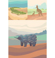 australian animals crocodile kangaroo and vector image vector image