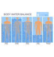 cartoon body and water chart infographics card vector image