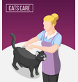 cats care isometric background vector image vector image