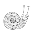 entangle snail for adult coloring pages art vector image