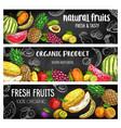 farm market tropical fruits chalk sketch banners vector image vector image