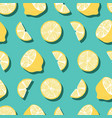 fruit seamless pattern lemons with shadow vector image vector image