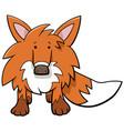 funny fox cartoon wild animal character vector image