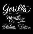 gorilla animal hand written typography vector image vector image