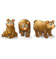 Three brown bears vector image vector image