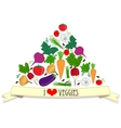 Vegetables card vector image