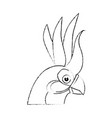 wild exotic bird vector image vector image
