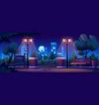 illuminated park at night cityscape on background vector image