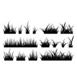 monochrome grass vector image vector image