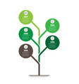 vertical time line infographics tree of vector image vector image