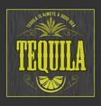 vintage alcohol tequila drink bottle label vector image vector image