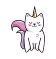 isolated magic cat unicorn vector image vector image