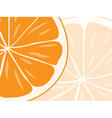 orange vector image vector image