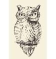 Owl vintage retro hand drawn sketch vector image vector image