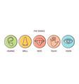 bundle 5 senses - hearing smell taste touch vector image