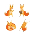 Cartoon Cute Squirrel Animal Set vector image