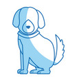 cartoon sitting dog with collar pet family vector image