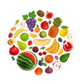 fruits and berries set of icons food concept vector image vector image