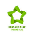 modern cannabis star logo vector image
