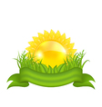 Nature symbols - sun green leaves grass ribbon vector image vector image