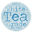 Tea How Is White Tea Graded text background vector image vector image