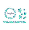 set different tropical leaves vector image vector image