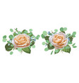 set of watercolor beautiful roses with vector image
