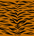 tiger animal print vector image vector image