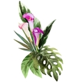 Tropical watercolor flowers vector image vector image